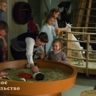 """Кормление животных, развивающие программы и мастер-классы для детей в контактных зоопарках """"Лесное посольство"""" в Бибирево и на Автозаводской, Москва"""