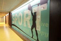 """""""ЮниСпорт"""", спортивный фитнес-центр на 8 марта в Тюмени"""