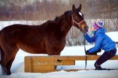 """КСК """"Баланс"""", конный клуб, верховая езда для детей и взрослых в Томске"""