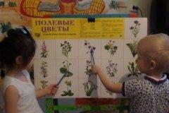 """""""Малыш"""", мини-садик для детей от 1 года до 7 лет в Центральном районе, Хабаровск"""