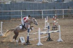 """""""Дельфин"""", конно-спортивный клуб, катание на лошадях в Хабаровске"""