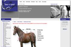 """""""Хвост и грива"""", hvost-griva.ru, интернет-магазин товаров для конного спорта, продажа лошадей в Москве"""
