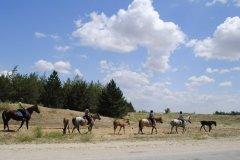 Koniland (Конилэнд), детский конный оздоровительный лагерь с изучением английского под Волгоградом
