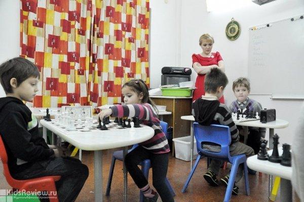 """Лабиринты шахмат"", шахматная школа для детей на Куусинена в Москве"