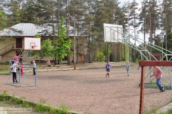 Летний спортивно-оздоровительный лагерь 2016 с занятиями по выправлению осанки и единоборствам в Ленобласти