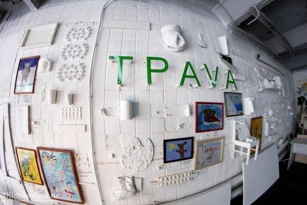 """""""TРAVA"""", """"Трава"""", арт-пространство, лофт в Новосибирске"""