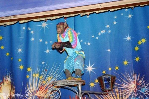 """""""Забавляя - поучать"""", спектакль для детей от 2 лет в театре """"Уголок дедушки Дурова"""", Москва"""