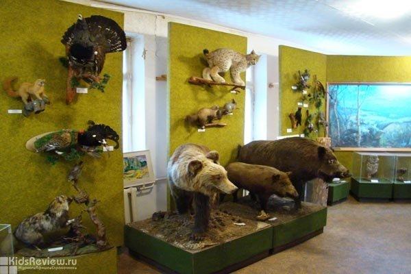 Музей леса в Челябинске