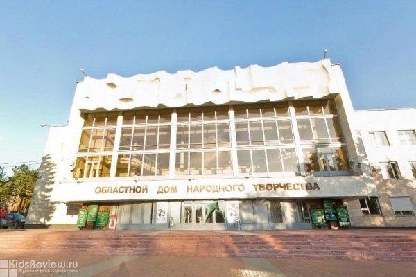 Областной дом народного творчества, концертный зал, кружки и студии для детей, Ростов-на-Дону