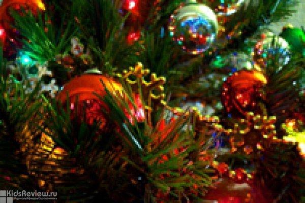 Новогодняя елка для всей семьи в РГДБ, Москва