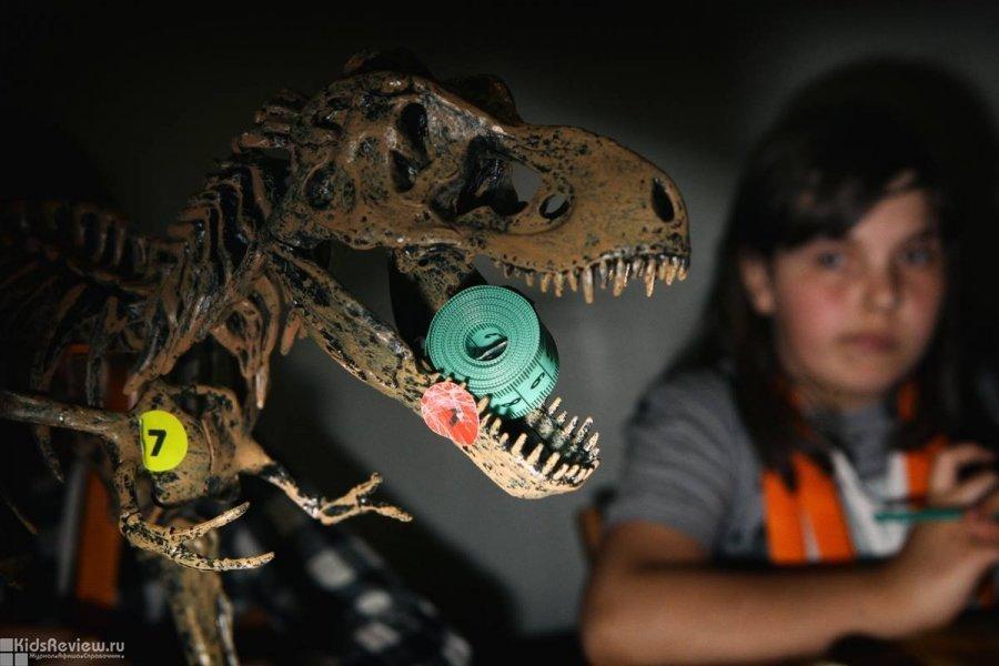 """""""Умная Самара"""", интерактивные мероприятия по естественным наукам для детей от 7 до 14 лет и их родителей, Самара"""