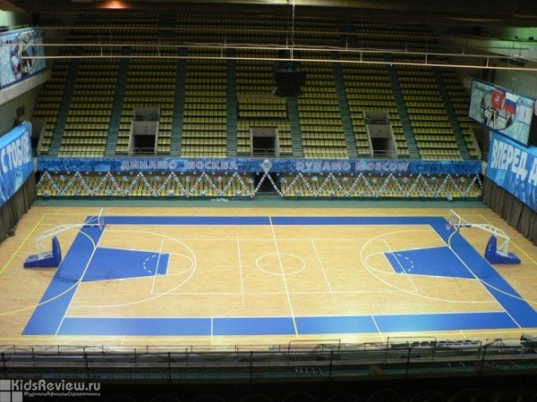 Динамо дворец спорта баскетбол