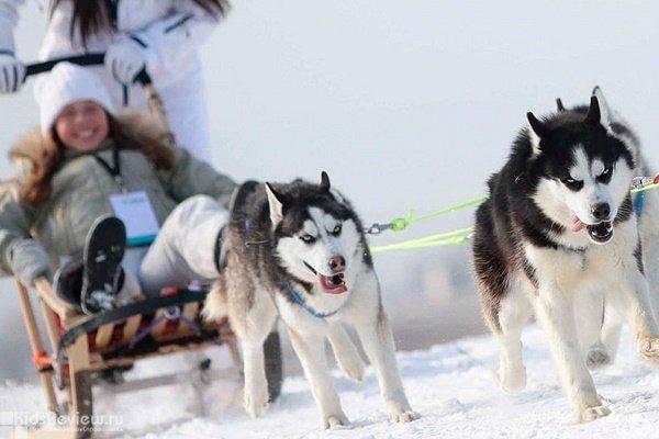 """""""Аквилон"""", этнический центр, питомник собак, праздники для детей, Челябинская область"""