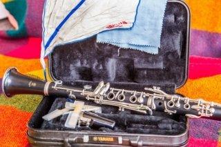 """""""Музыкальное путешествие"""", музыкальная программа для детей от 6 лет в Хабаровской краевой филармонии, Хабаровск"""