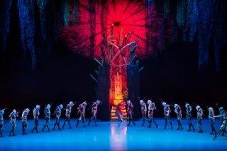 """""""Жар-птица"""", вечер балета для зрителей от 6 лет в Приморском театре оперы и балета, Владивосток"""