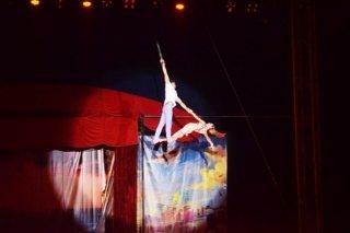 """""""Секреты моря"""", шоу голландского цирка в парке развлечений """"Сочи Парк"""", Сочи"""