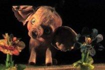 """Спектакль """"Слоненок"""" для детей от 4 лет в Самарском театре кукол, отзыв читателя"""